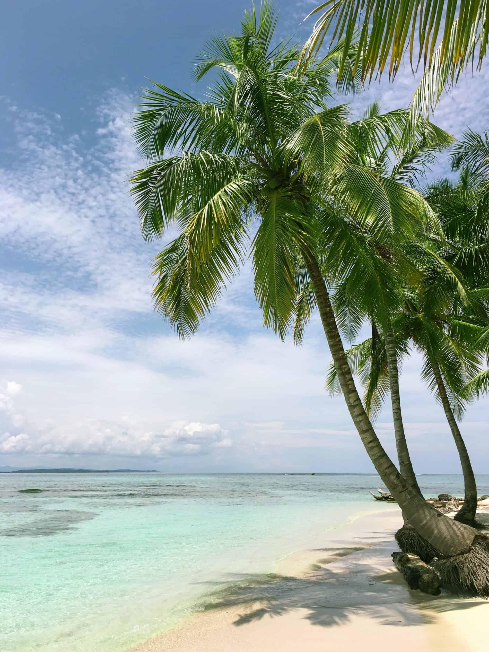 Sognare mare verde e spiagge dorate a San Blas